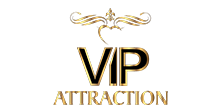 VIP Attraction Sticky Logo Retina